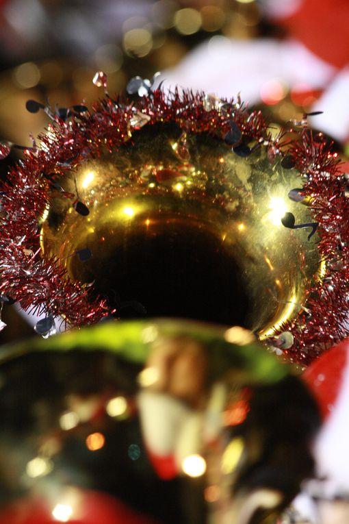 Album - Tubas-de-Noel-2011--2eme-partie-