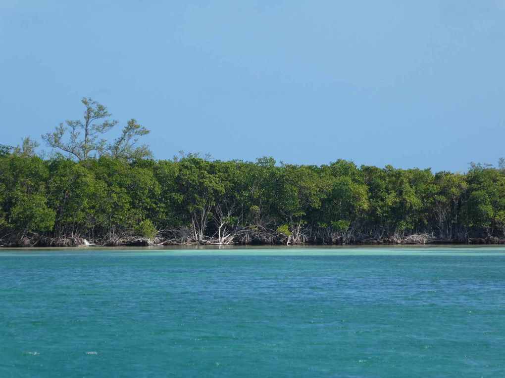Middle Long cay