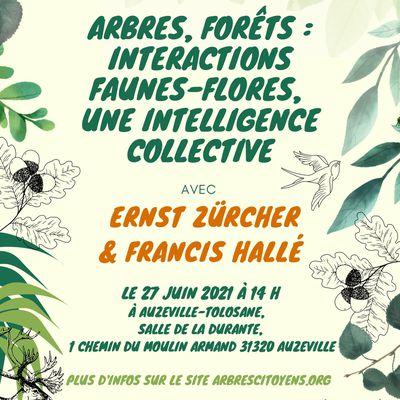 Conférence dimanche 27 juin - Interactions faune / flore en forêt
