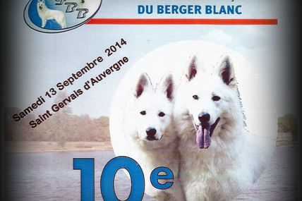 Nationale d'elevage berger blanc suisse 2014