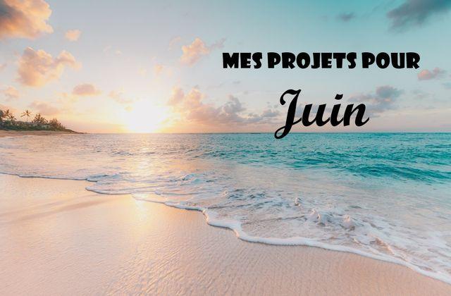 Mes projets pour Juin 2019