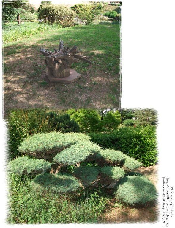 Sortie réalisée par Floriscola le 21/5/11 à Crest, Pivoines Rivières et visite du Jardin Zen d'Erik Borja