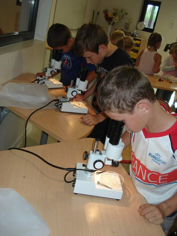 photos sortie scolaire CP-CE1 Terra Botanica