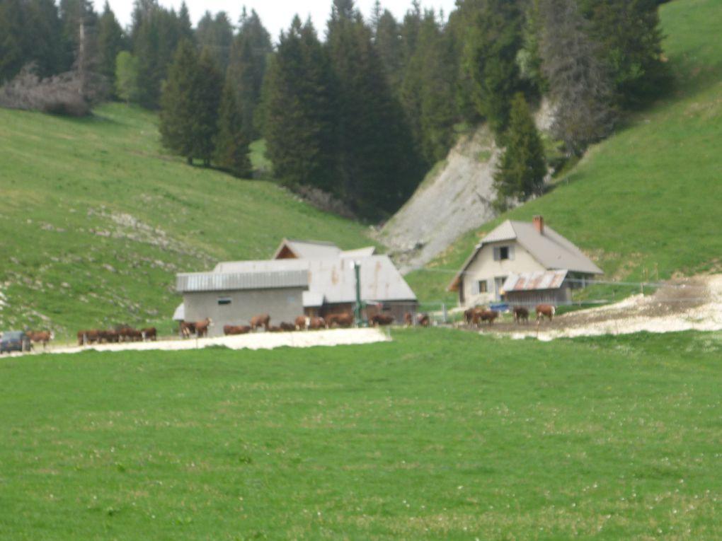 Album - Savoie