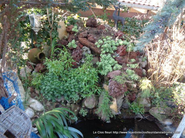 Mon jardin Le Clos fleuri en novembre 2019