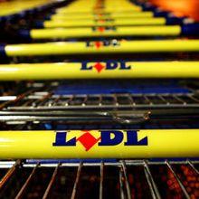 « Caddie Test » : Flicage quotidien chez LIDL : rappeler leurs droits aux caissier(e)s, afficher sa solidarité !