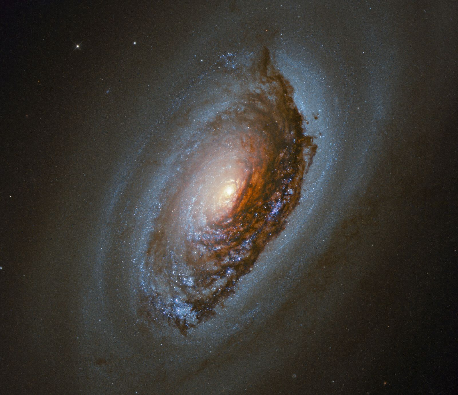 Eye in the Sky (ESA/Hubble & NASA, J. Lee and the PHANGS-HST Team; CC BY 4.0 Acknowledgement: Judy Schmidt)