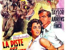 La Piste des Eléphants (1954) de William Dieterle