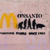Glyphosate : Monsanto (de nouveau) accusé de corruption scientifique - MOINS de BIENS PLUS de LIENS