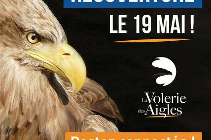 KintzheimLa volerie des aigles réouverture mercredi 19 mai