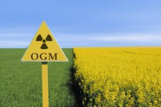 Pour interdire un OGM, les Etats devront demander la permission aux entreprises