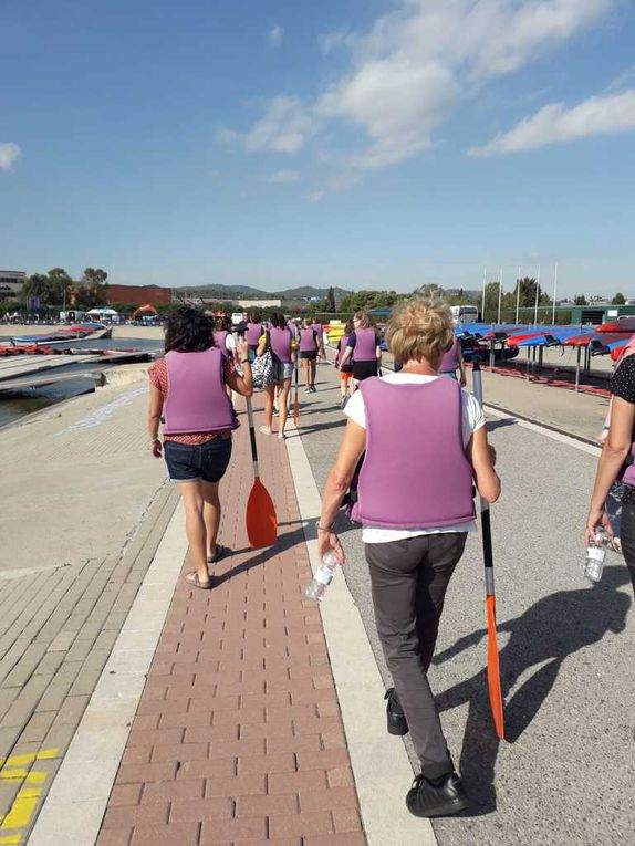 SMSP19 HEALTH  ROWING ACTIVITY ON THE OLYMPIC CANAL