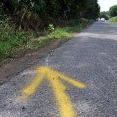 Accident dans le Morbihan : quatre adolescents tués dans une fourgonnette transportant 14 mineurs