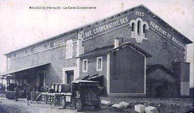 Cave coopérative de Mauguio (Hérault)