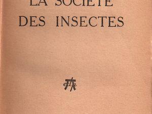 """J.-H. Rosny Jeune """"La Société des insectes"""" (Editions des Portiques - 1931) [version 2]"""