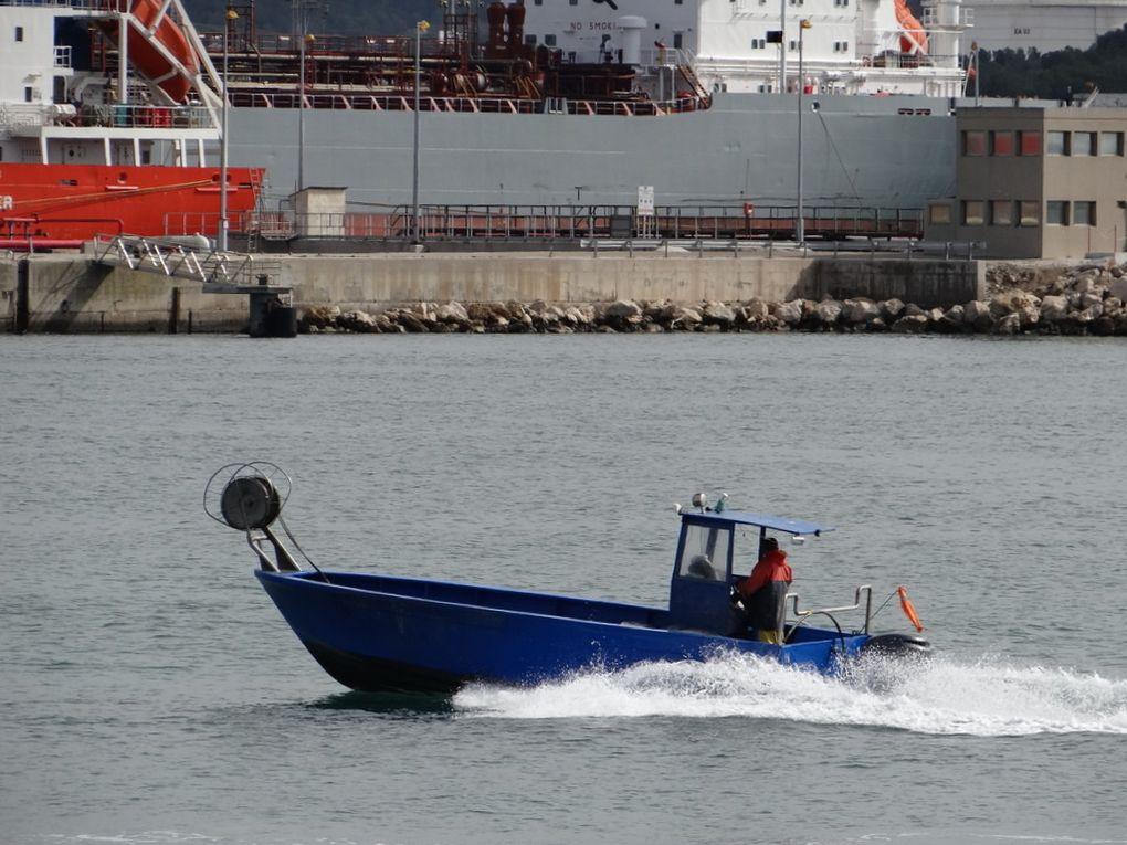 JULIA , MT 670424, dans le port de Port de Bouc