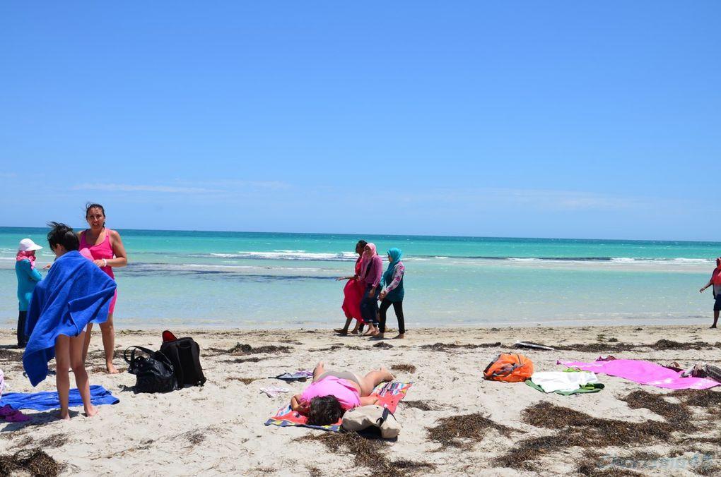 Djerba (La presqu'île des flamants roses)