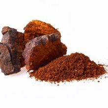 Key Health Benefits Of Chaga Mushroom Tea