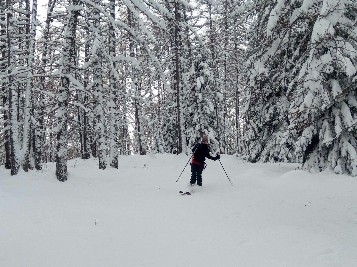 La neige est toujours aussi bonne, dans la forêt cette fois ci.
