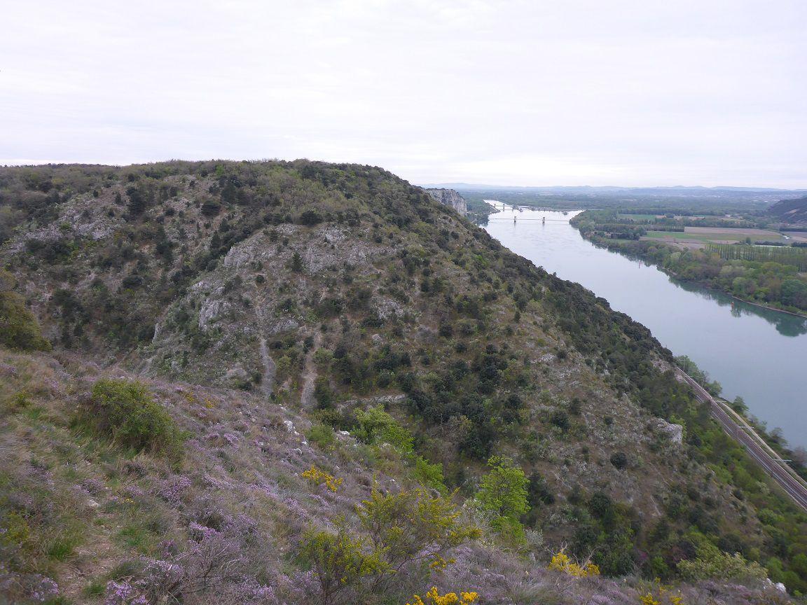 Prospection Chateauneuf du Rhône 10.04.21