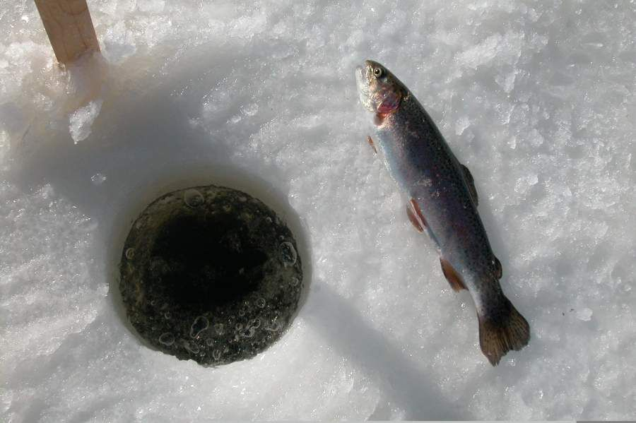 Mobility SMFI19 Ice fishing