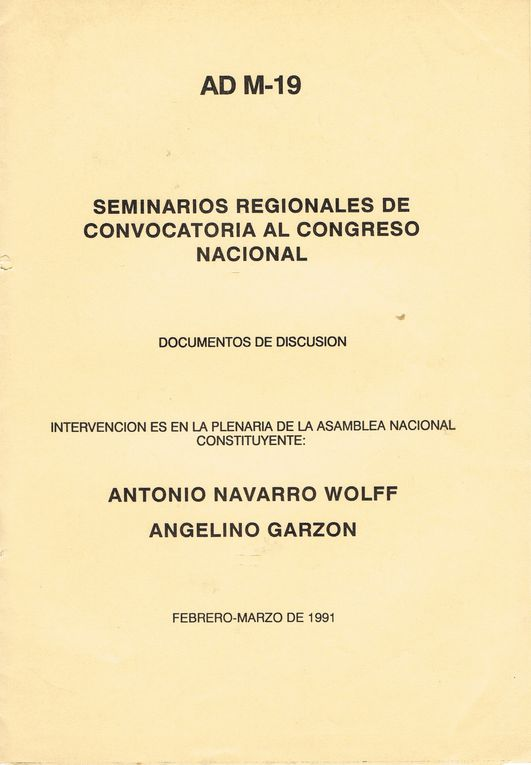 Album - 1991Intervencion-Navarro-Angelino