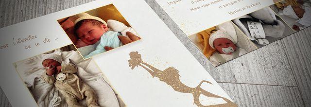 Le faire part de naissance du petit Tino ... roi lion (lion king Disney)