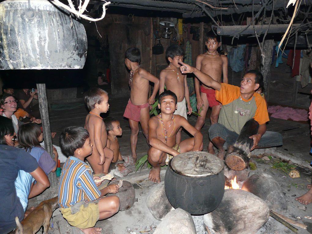 """Août 2009, trek de 12 jours dans le pays des """"hommes fleurs, chez les Mendawaï sur l'ile de Sibeirut à 10 heures de bateau de Sumatra, boue, vers et tremblement de terre au programme, mais belle aventure humaine"""