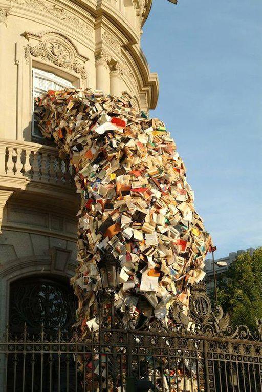 Du bonheur et de très belles images pour une autre façon de voir les livres !