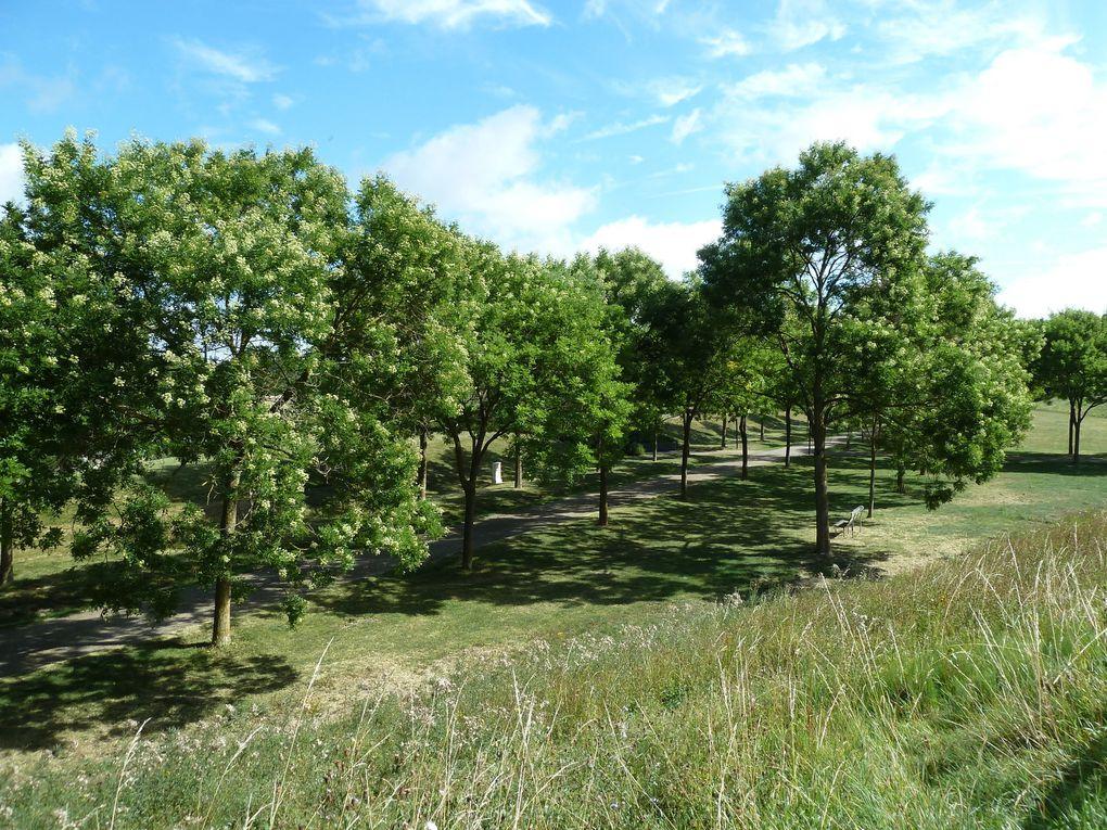 Promenade au Parc du Sausset - 8,5 km.