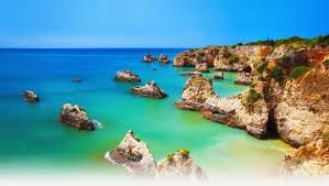 The Algarve and vines