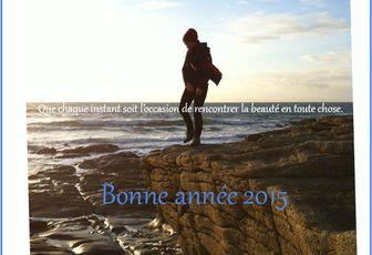 Je vous souhaite une belle année !