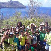 En rando avec Manu: nettoyage de notre AME, cabanes et mangrove... - Manu et Martin autour du monde