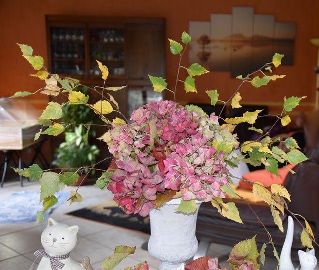 "ma table "" hortensias et chats""...."