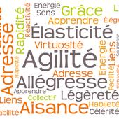 Définition de l'agilité et d'une organisation Agile - Agileom