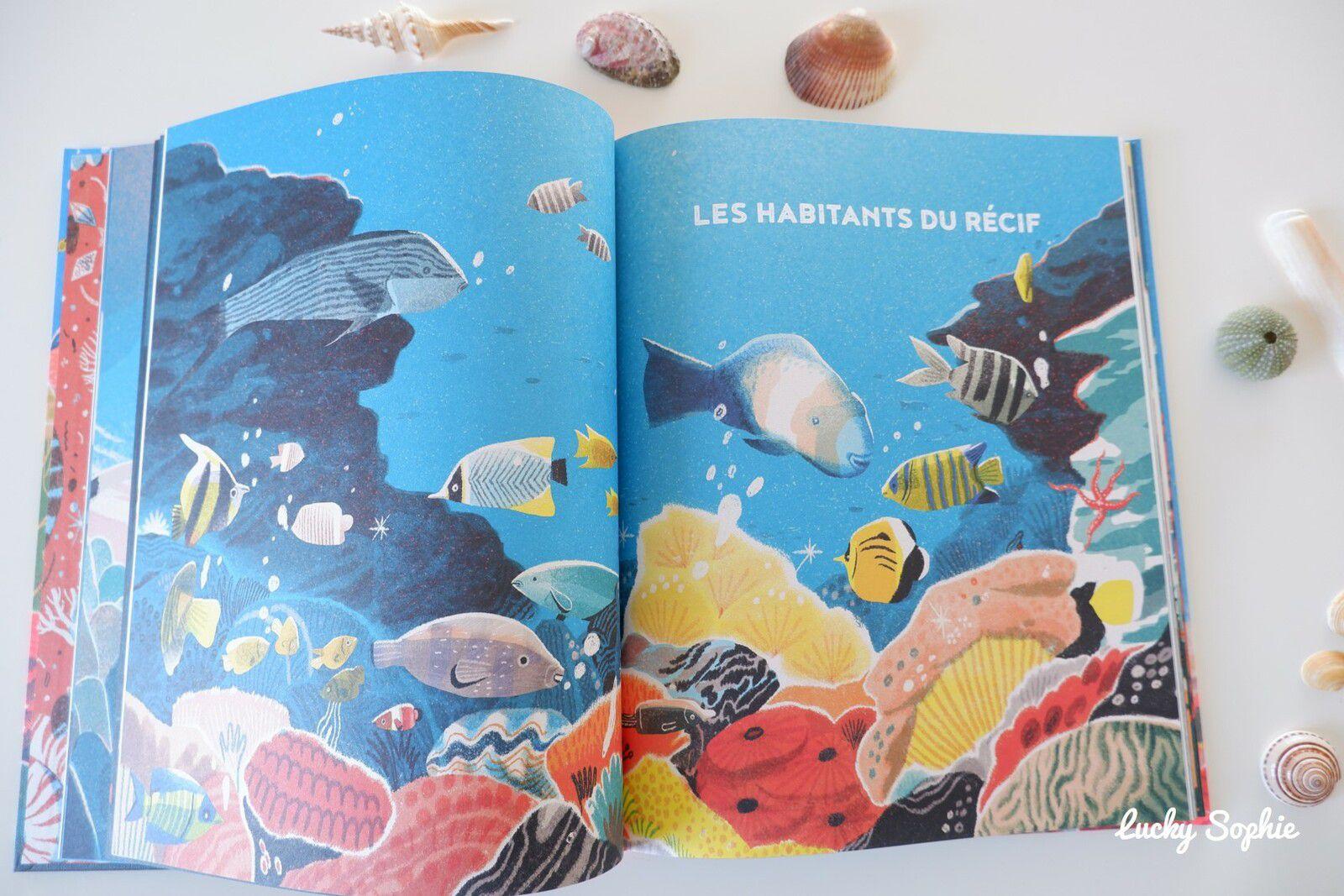 La grande barrière de corail, documentaire enfant
