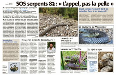SOS SERPENTS 83