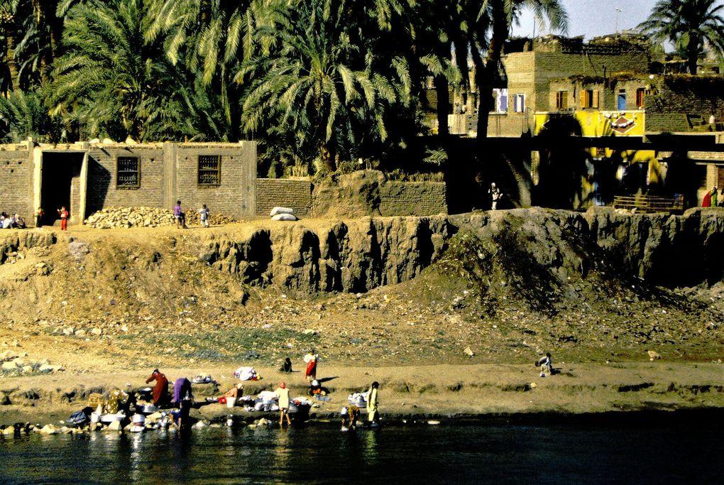 Oasis-ruban incroyablement vert entre murailles rocailleuses et désert partout, la vallée du Nil concentre la vie et les cultures sur une largeur parfois de quelques centaines de mètres. Eblouissant.