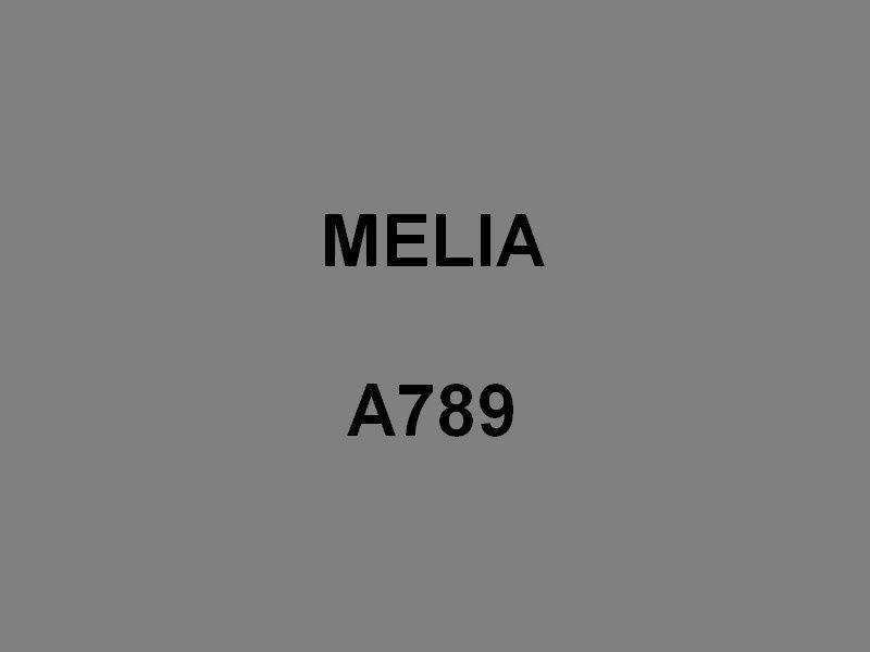 MELIA  A789 , vedette armée par la gendarmerie maritime
