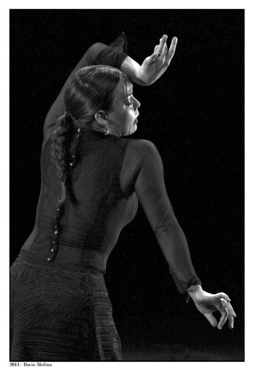 Album - 981_2005 - 2013-Festival-Flamenco
