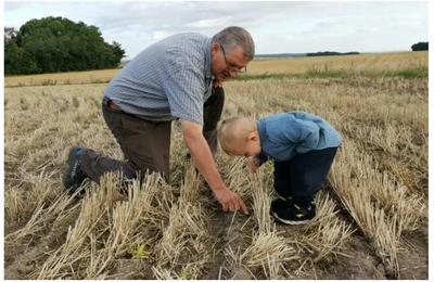 Les agriculteurs utilisent la technologie pour s'adapter au changement climatique