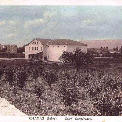 CHANAS (Isère)