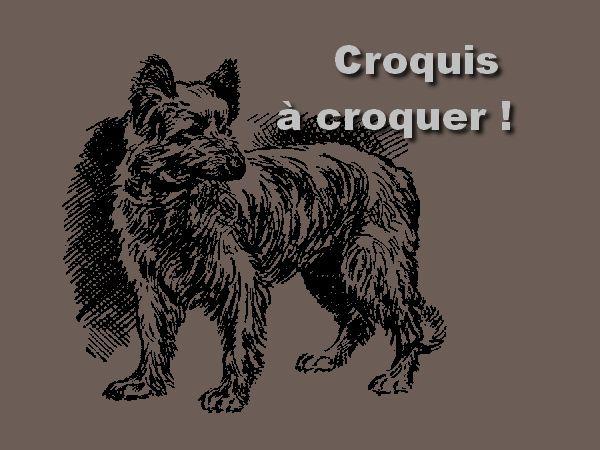 """""""Croquis à croquer"""" (BONUS derniers n°)"""