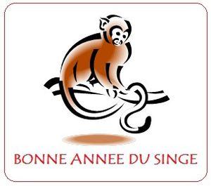 8 février 2016 ; année du singe de feu