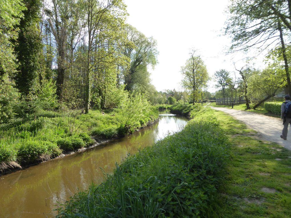 Randonnée ceinture verte de l'île-de-France- Etape 3 - 19,2 km.