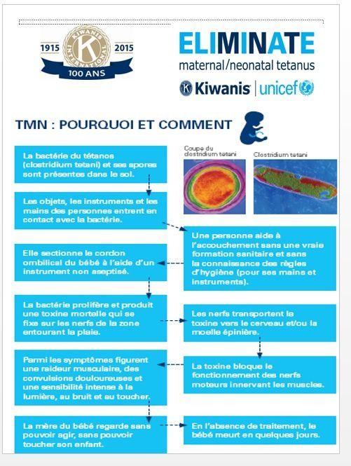 Des primevères pour une bonne cause avec le Club Kiwanis Colmar Schweitzer
