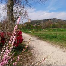 """Tour par """"Canoë Drôme"""" , chantier vélodrome"""
