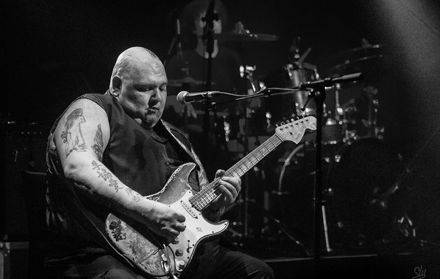 Popa Chubby sit and alive