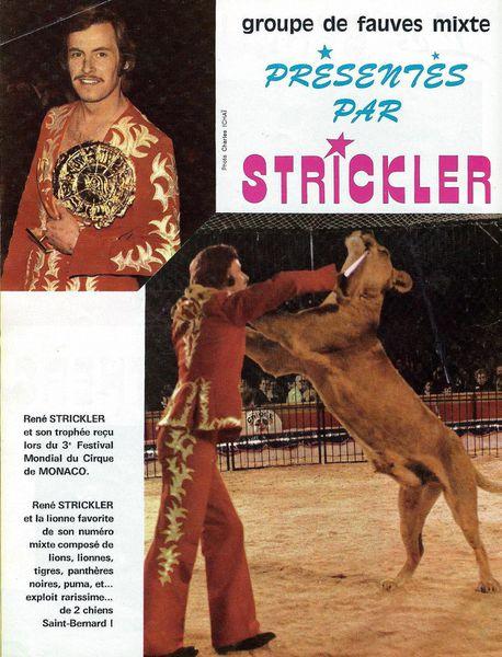 René Strickler, de la banque à la cage aux fauves