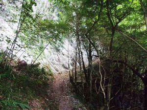 Un vrai chemin de montagne.